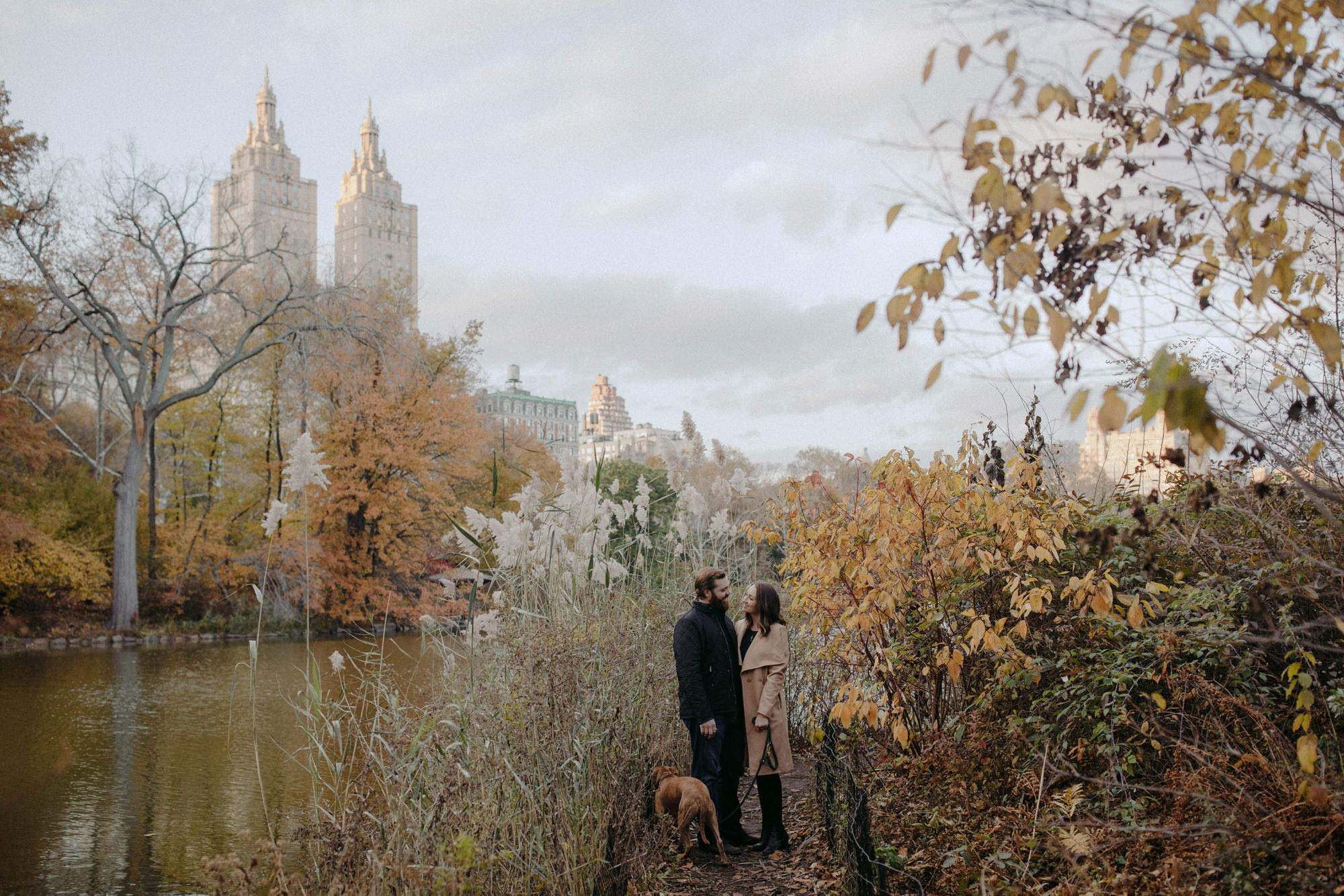 Engagement shoot in the fall at Central Park