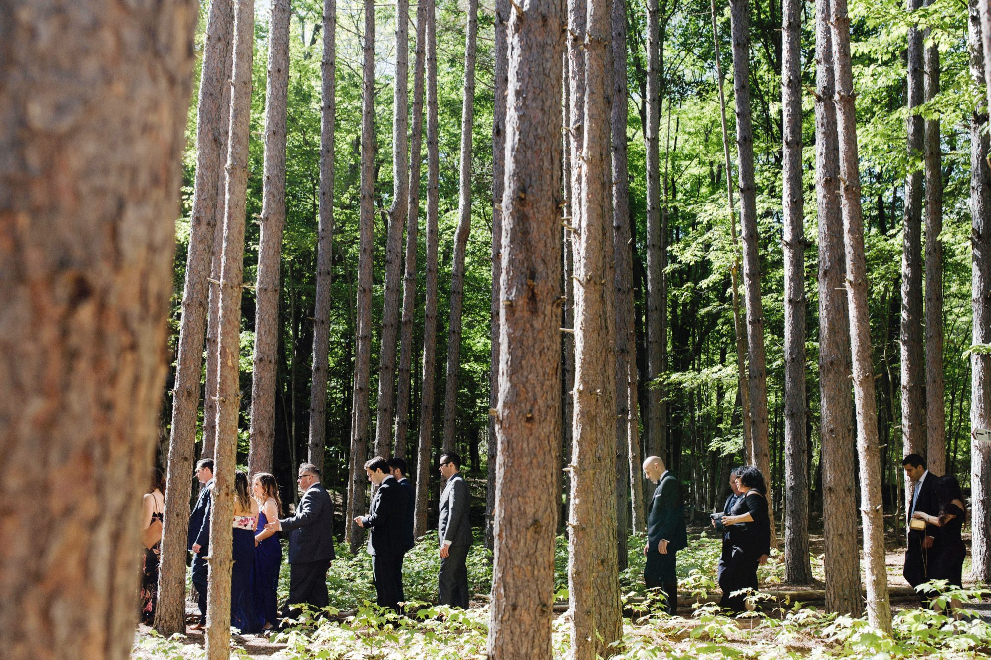 Guests walking up to The Pine Grove wedding ceremony location at Roxbury Barn Estate in the Catskills New York